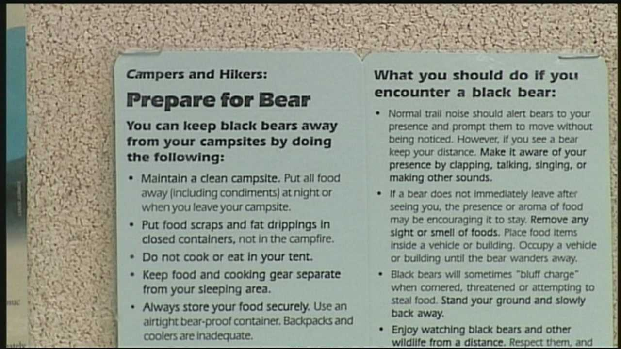 Black bear sightings up in New Hampshire