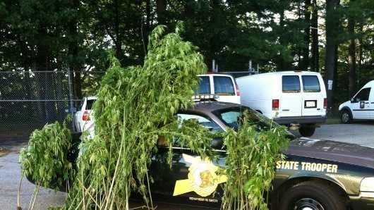 img-state police drug bust