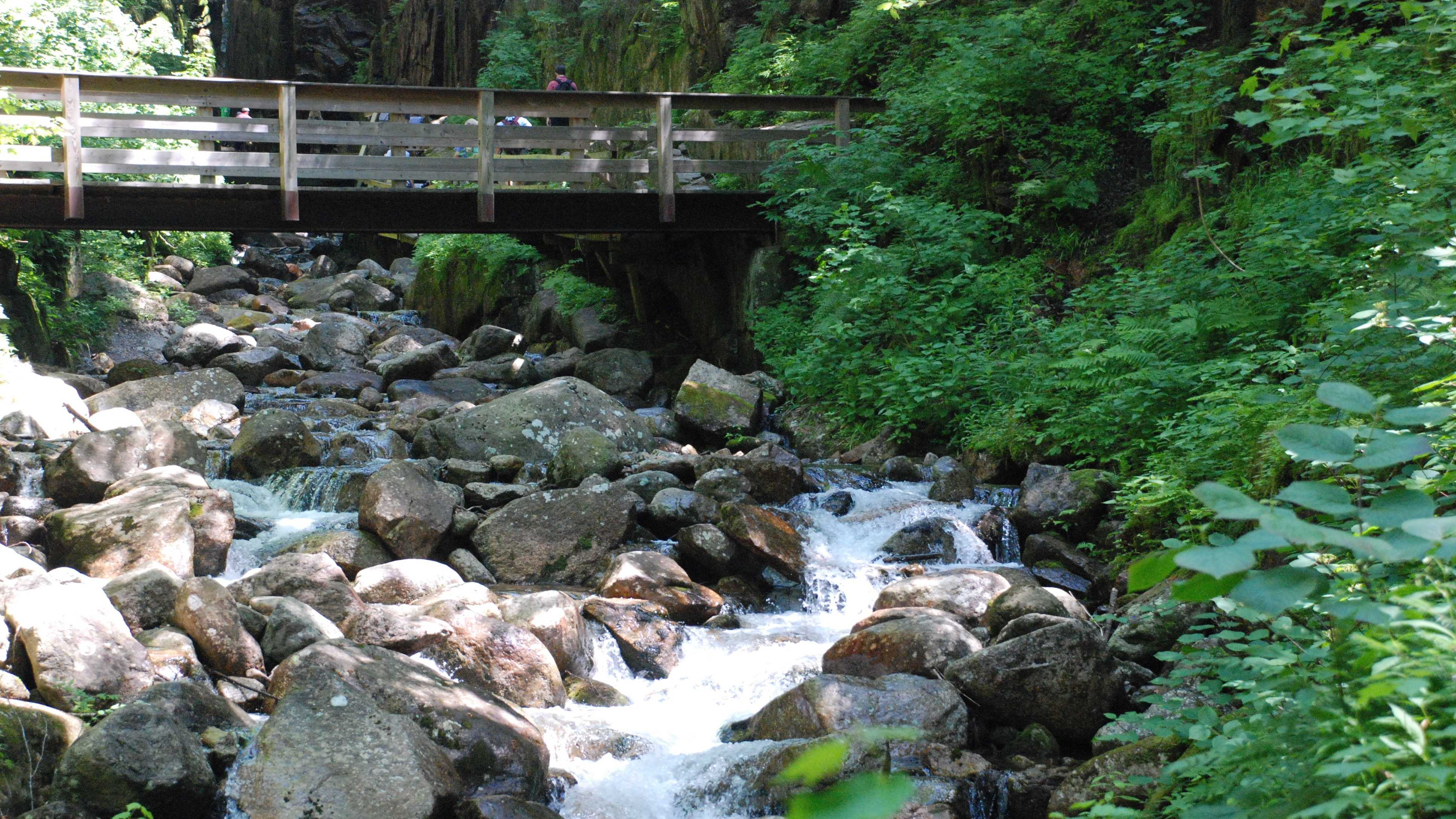 The Flume is a natural gorge at the base of Mount Liberty.