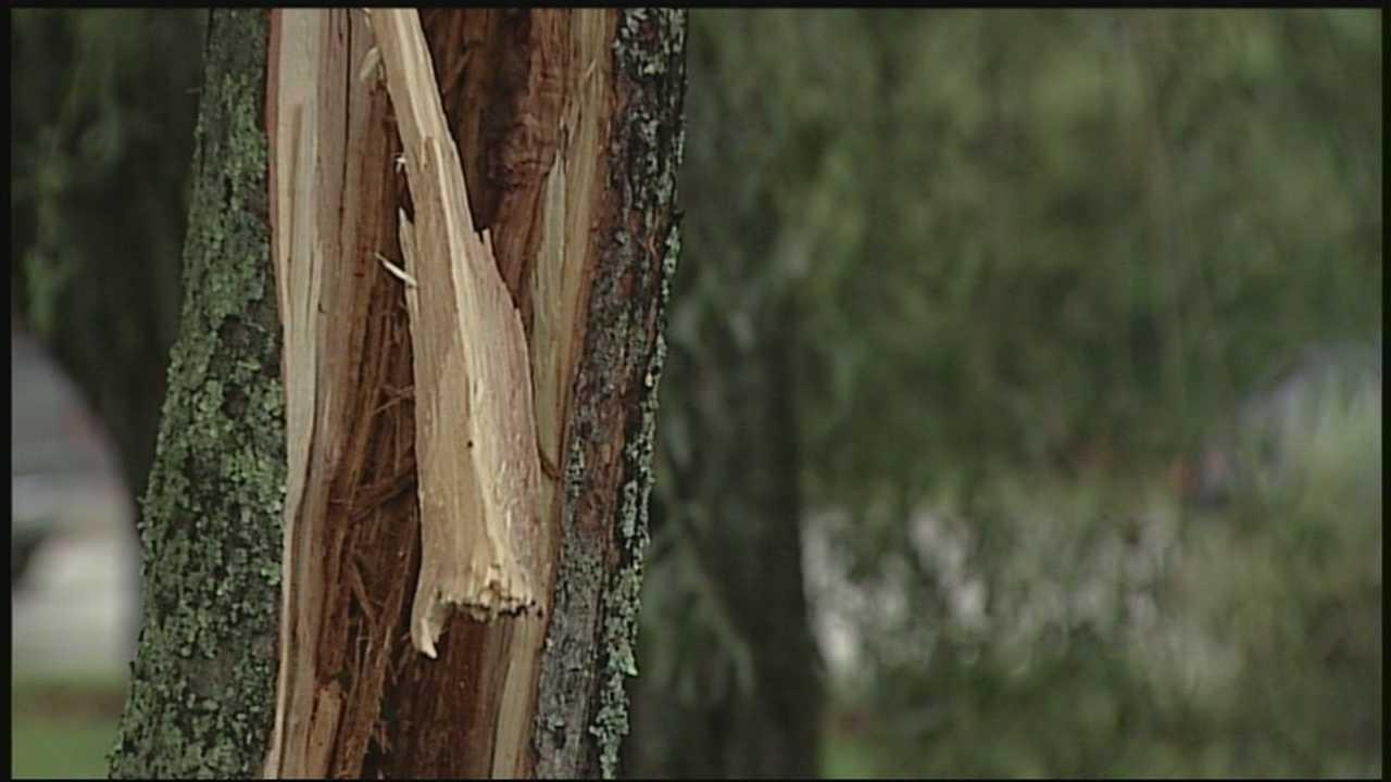 Lightning strikes hit Granite Staters