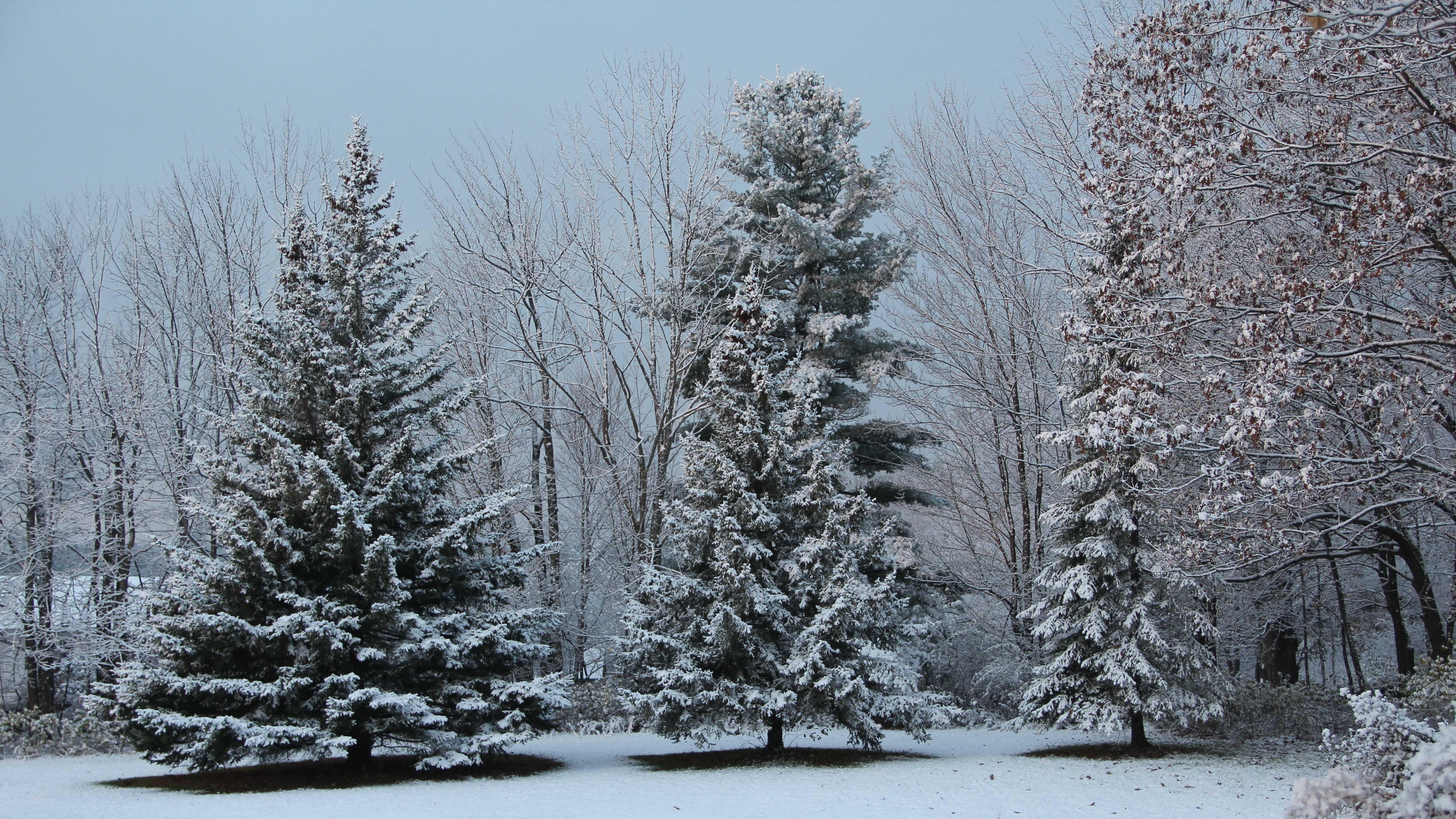 58--snow-1110.jpg