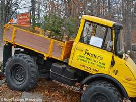 15) Forster's Christmas Tree Farm in Henniker