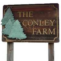 Tie-10) Conley Tree Farm in Farmington