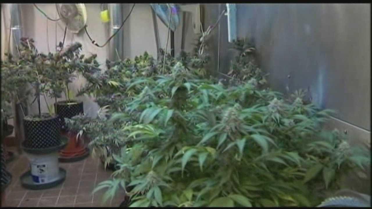 Governor plans veto of marijuana legalization