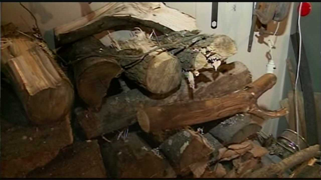 Police investigate firewood thefts in Candia