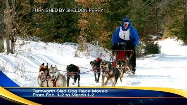 tamsworth sled race