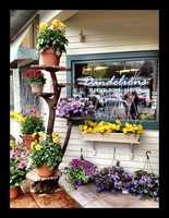 18) Dandelions Florist in Wolfeboro