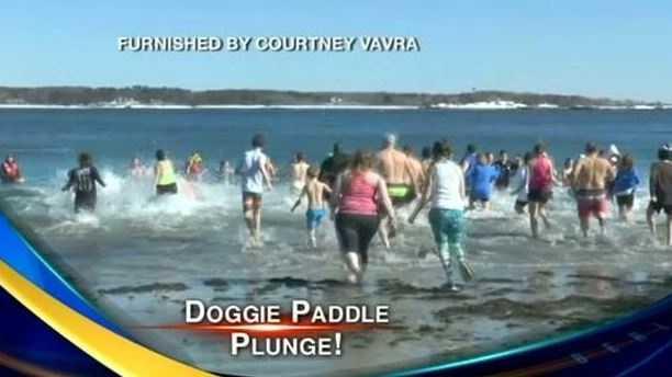 doggie paddle plunge
