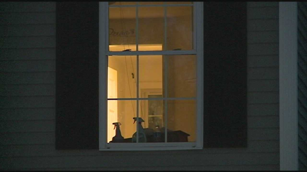 Cats Stuck In House