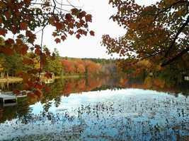 47) AltonPercent of population born in New Hampshire: 46.9%