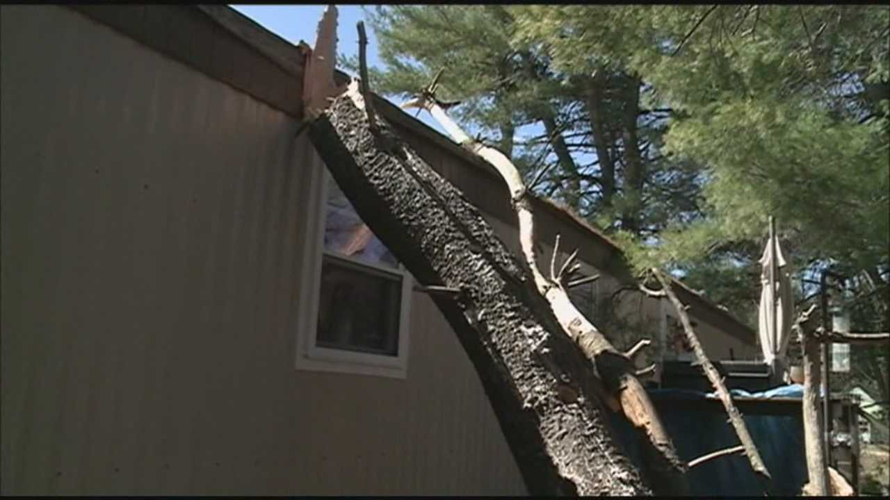 Tree crashes onto roof of Antrim home