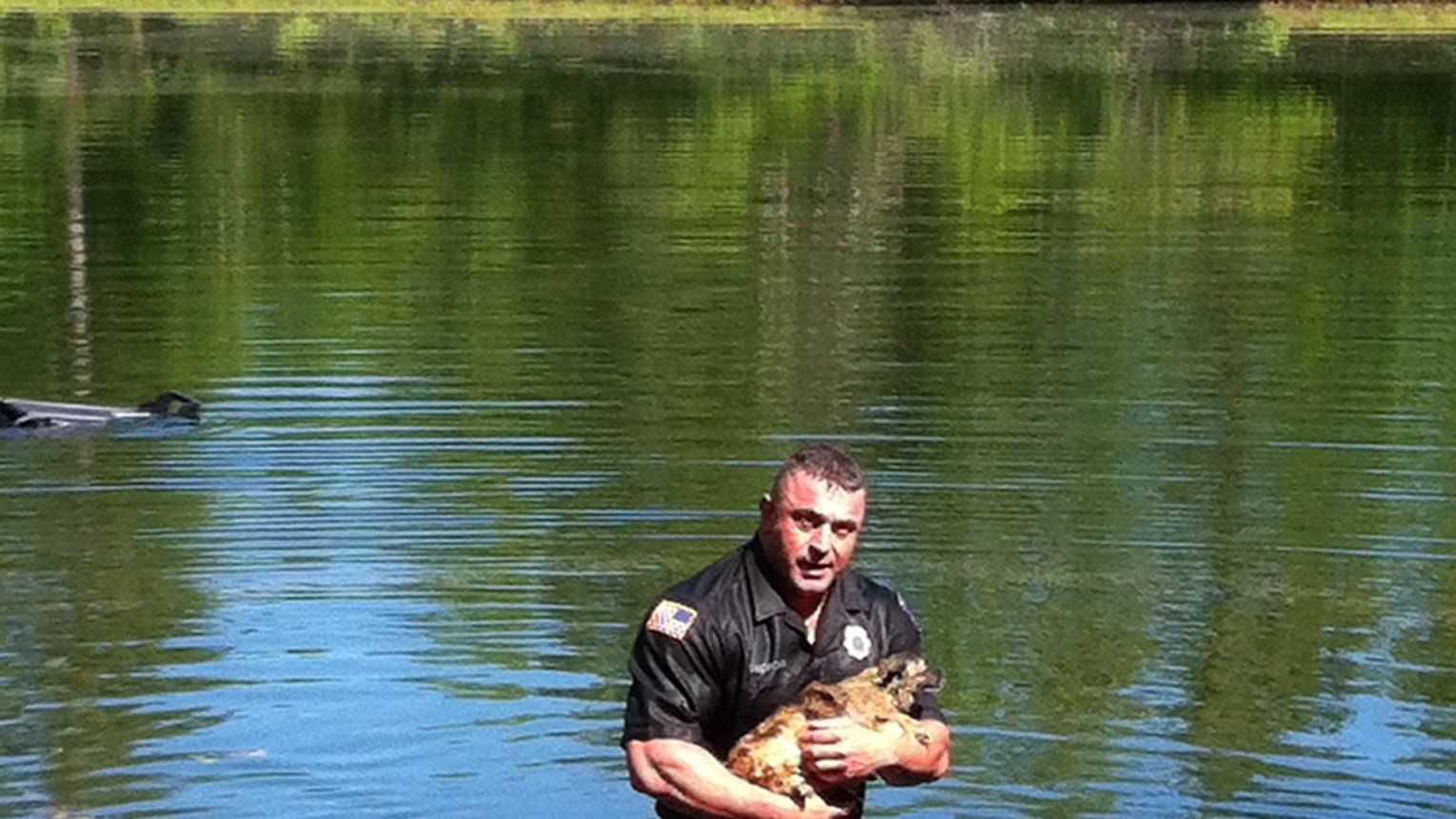 Mass. officer rescues dog from submerged pickup truck