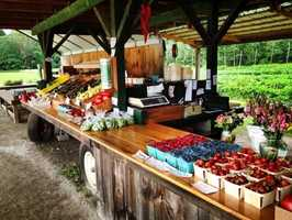 16 tie. Green Wagon Farm in Keene