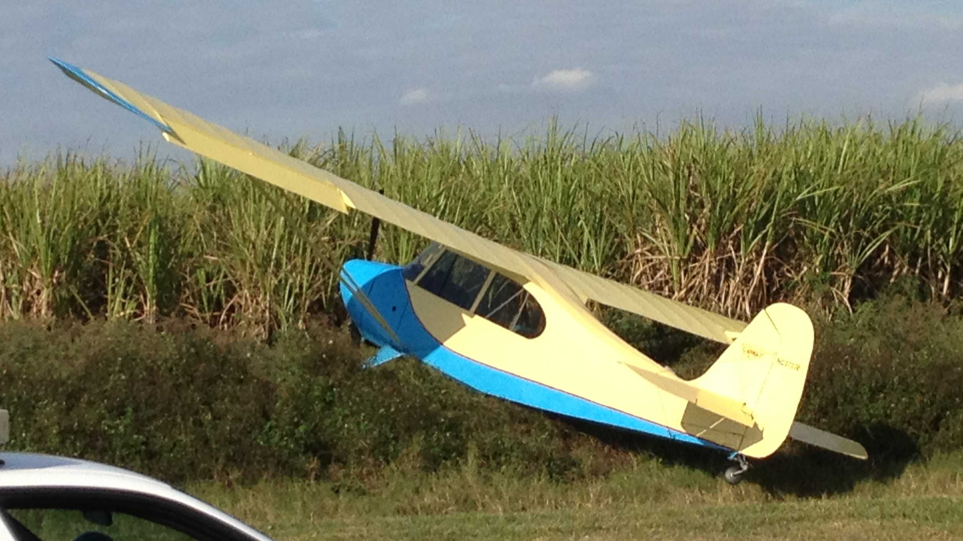 Crop duster plane in sugar cane field