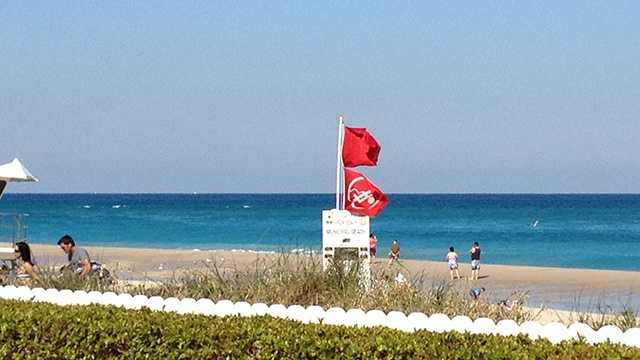 Beach Red Flag Sharks Panic Death Alert