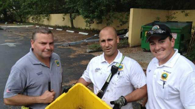 Firefighters resue ducks