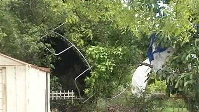Tornado topples trampoline, splits branches in half