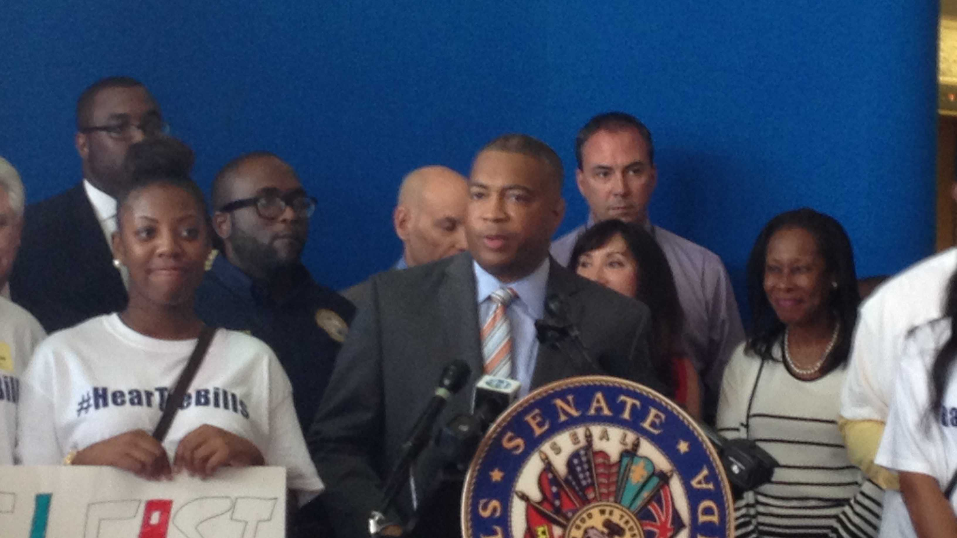 "Democratic Senate leader Chris Smith calls for lawmakers to have a discussion about the ""Stand Your Ground"" law."