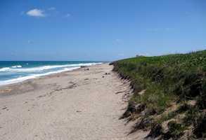 7. Hobe Sound Beach