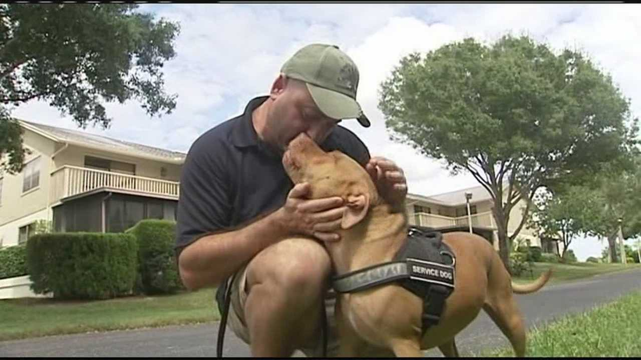 Disabled Navy veteran Nick Spagnolo says his Property Owners Association won't let his service dog, Scarlett, stay at his Hobe Sound home.