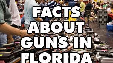 Wondering which local county is packing the most heat? Find out on WPBF.com.(Source: Florida Dept. of Agriculture & Consumer Services, Division of Licensing)