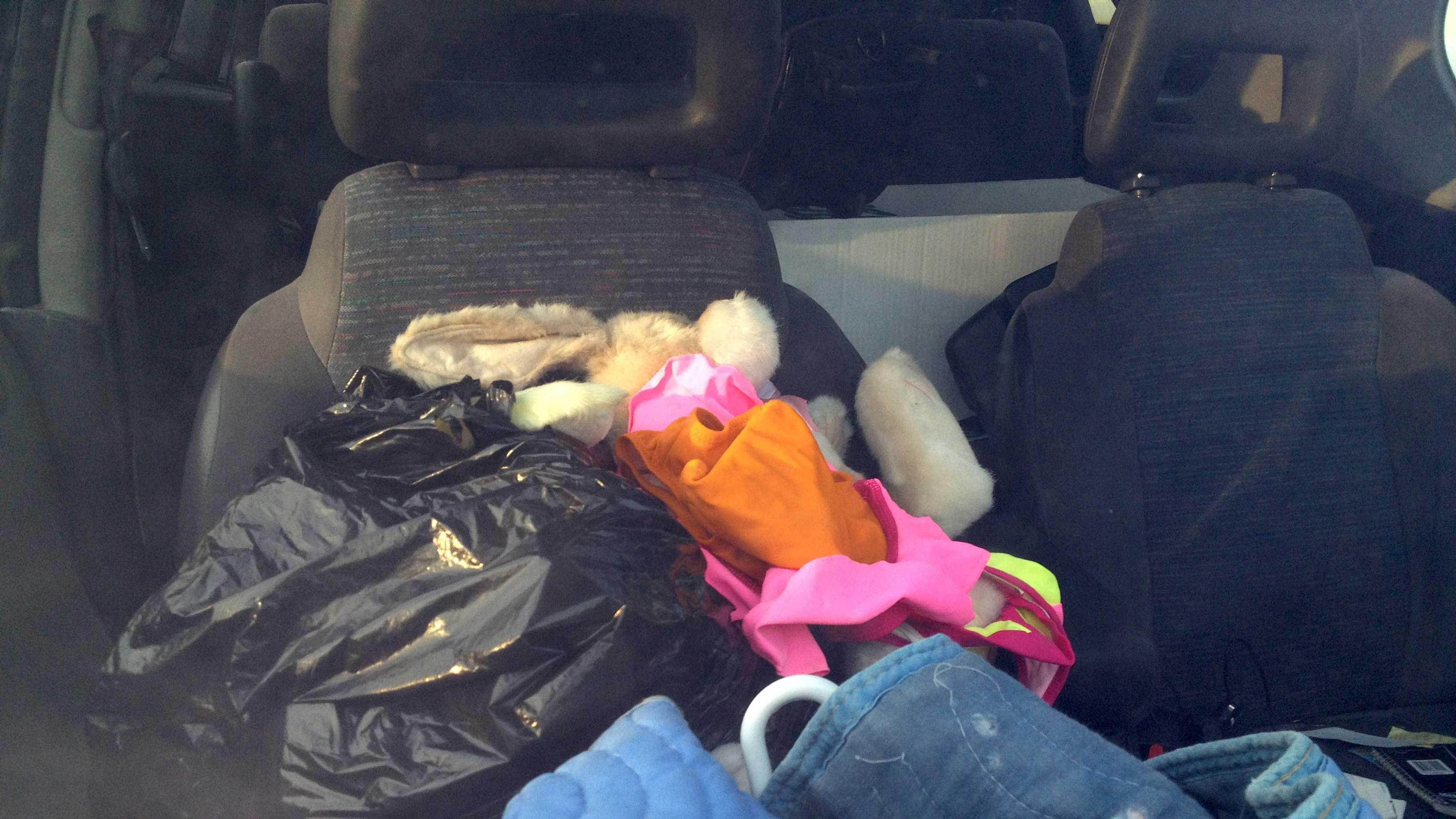 Stuffed Animals in Suspect's Car
