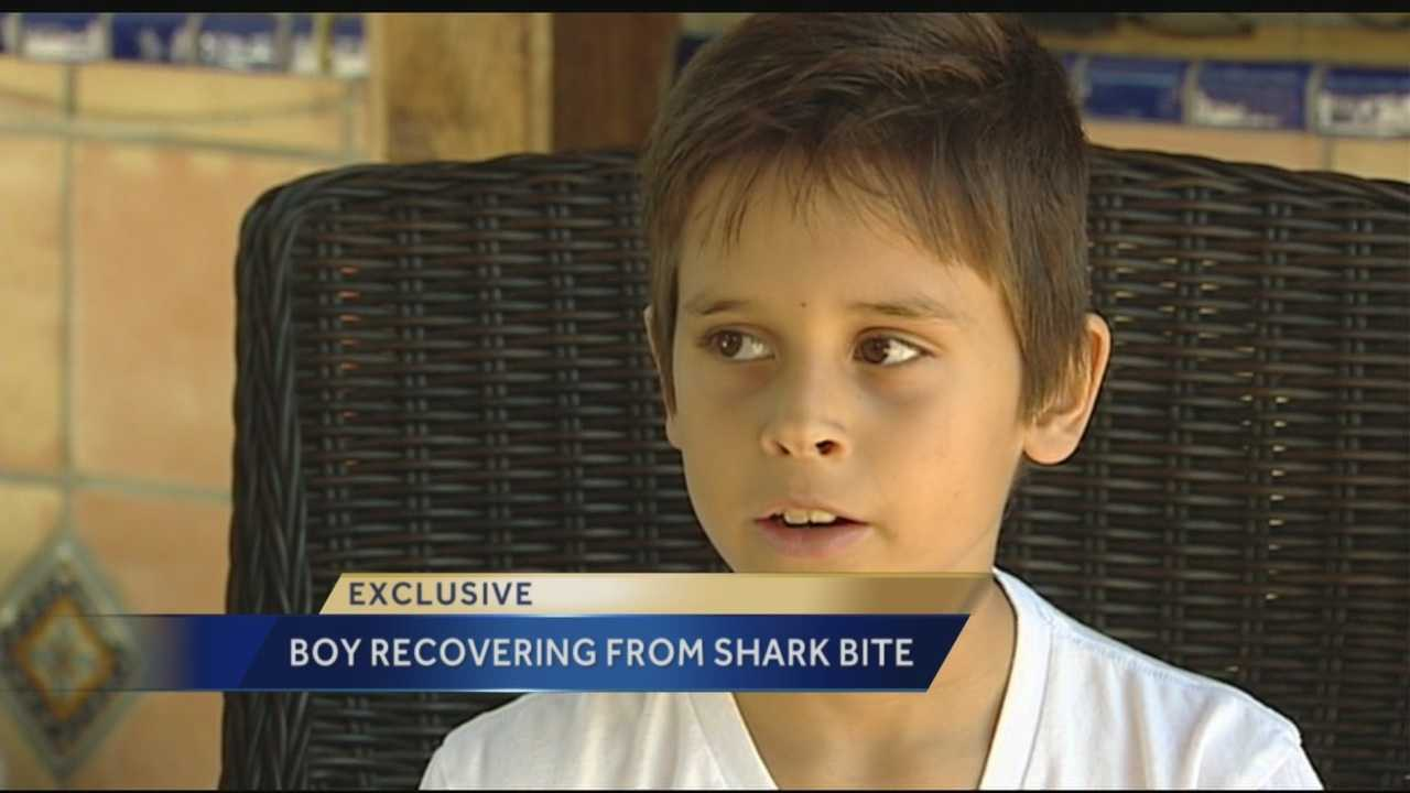 Image Boy says he'll surf again after shark bite wound heals