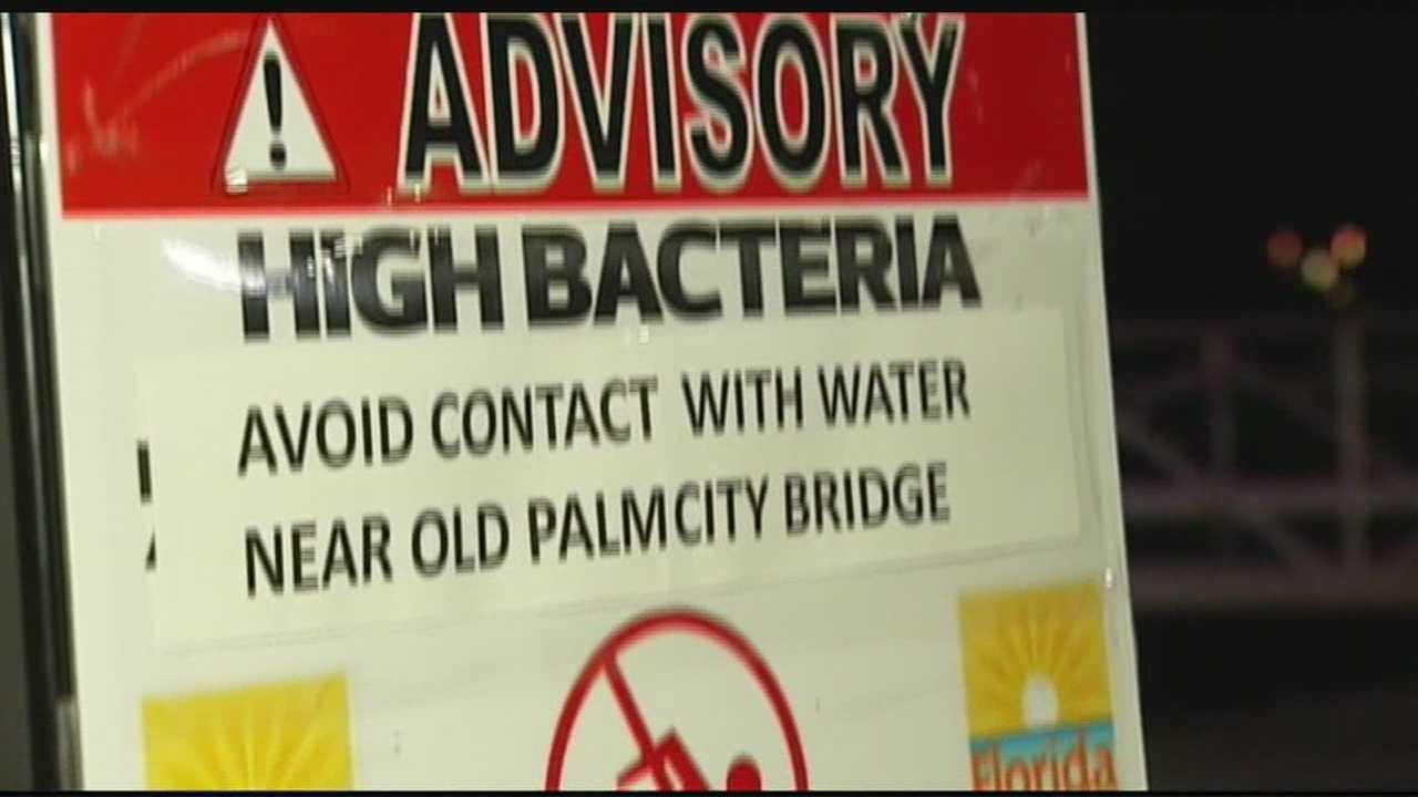 img-McGrath Bacteria
