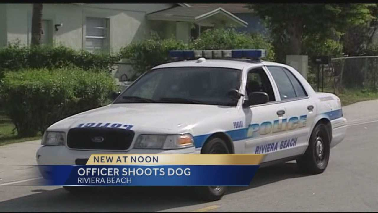 A pit bull that a witness said was behaving aggressively was shot by a police officer in Riviera Beach on Thursday morning.