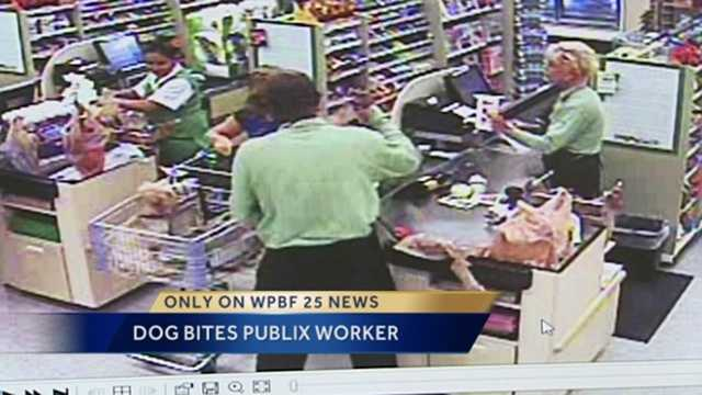 """A woman's small dog bit a worker in a Palm Beach Publix supermarket. The incident was all caught on the store's video surveillance. The owner says this isn't the first time """"Martini"""" has bitten someone."""