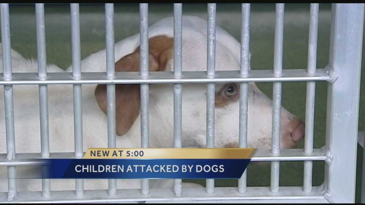 Children attacked by 3 dogs, family speaks about incident