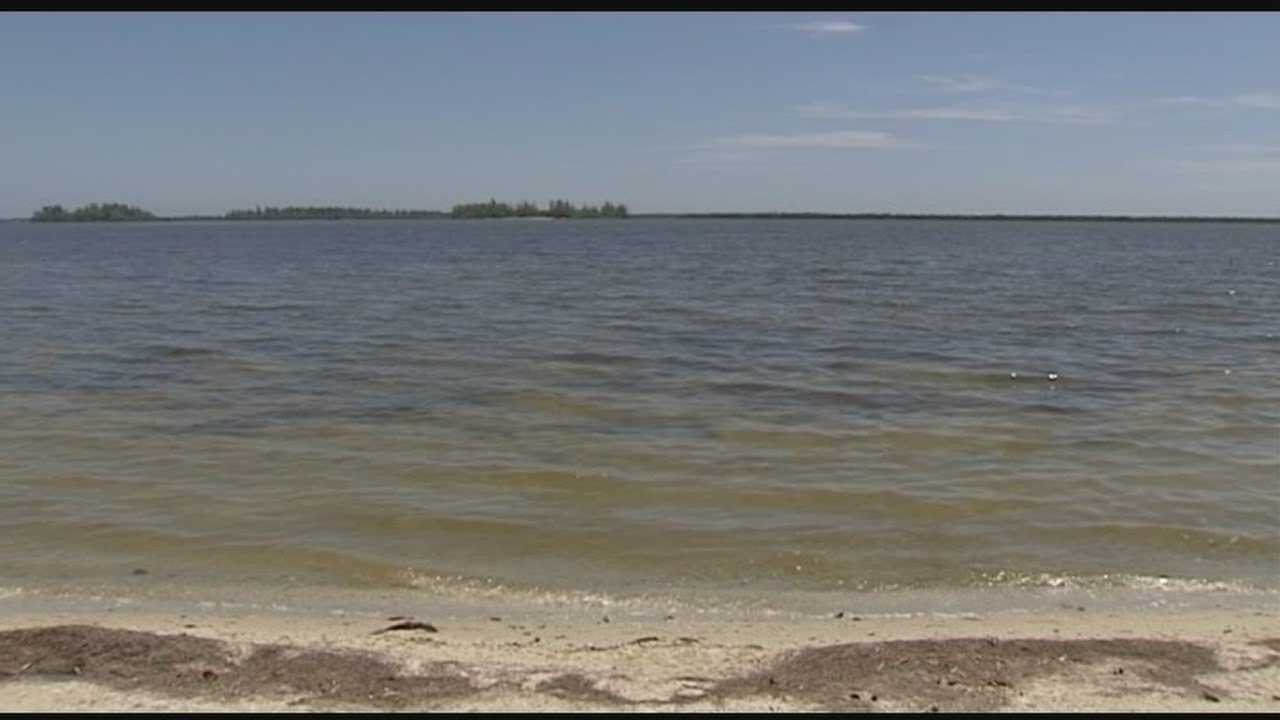 Deadly bacteria found in Indian River lagoon