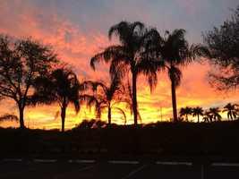 Karol Garcia - West Boca Raton.