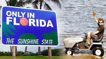 Maybe it's the heat. Maybe it's Florida's tropical and subtropical landscape. Maybe being surrounded mostly by water has its pull. Whatever it is, Florida is known for its eclectic mix of residents, wildlife and things often see while traveling and/or living in the Sunshine State.We asked our WPBF 25 News Facebook fans to share their best #OnlyInFlorida photos. Some may make you laugh – some might have you scratching your head. Either way, Florida rules!