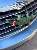 Holiday flair Florida style.