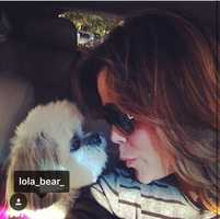 WPBF 25 News anchor Felicia Rodriguez and her dog Lola.