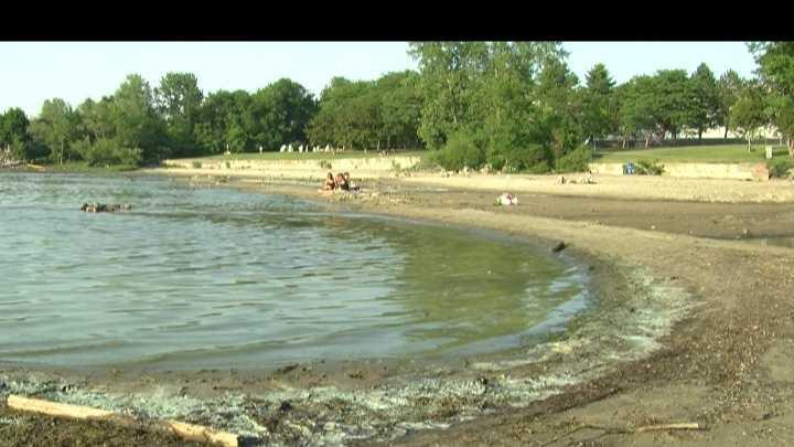 Algae causing a stink on Lake Champlain