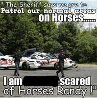 """""""The Sheriff says we are to patrol our normal areas on horses... I'm scared of horses Randy!"""""""