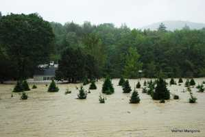Flooded Christmas Tree farm along Rt. 11 in Chester.