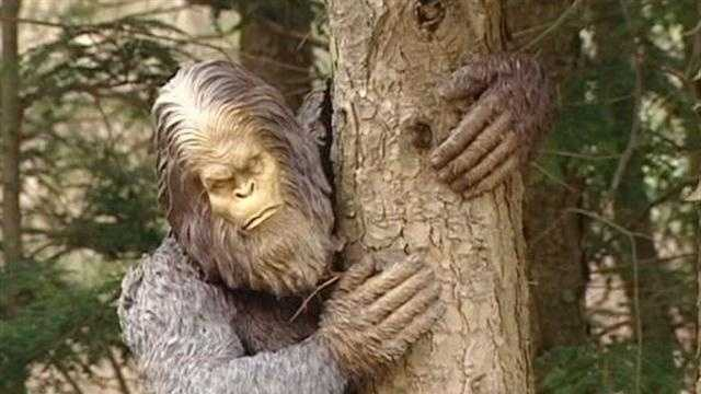 Self-described sasquatch researcher Frank Siecienski insists he captured one of the legendary hairy beasts on a camera he set up outside his Hubbardton, Vt. home.