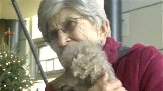 A 14-year old poodle named Holly, found wandering on the streets of Connecticut, was in need of a home. An 85-year-old Vermont woman was in need of a friend.