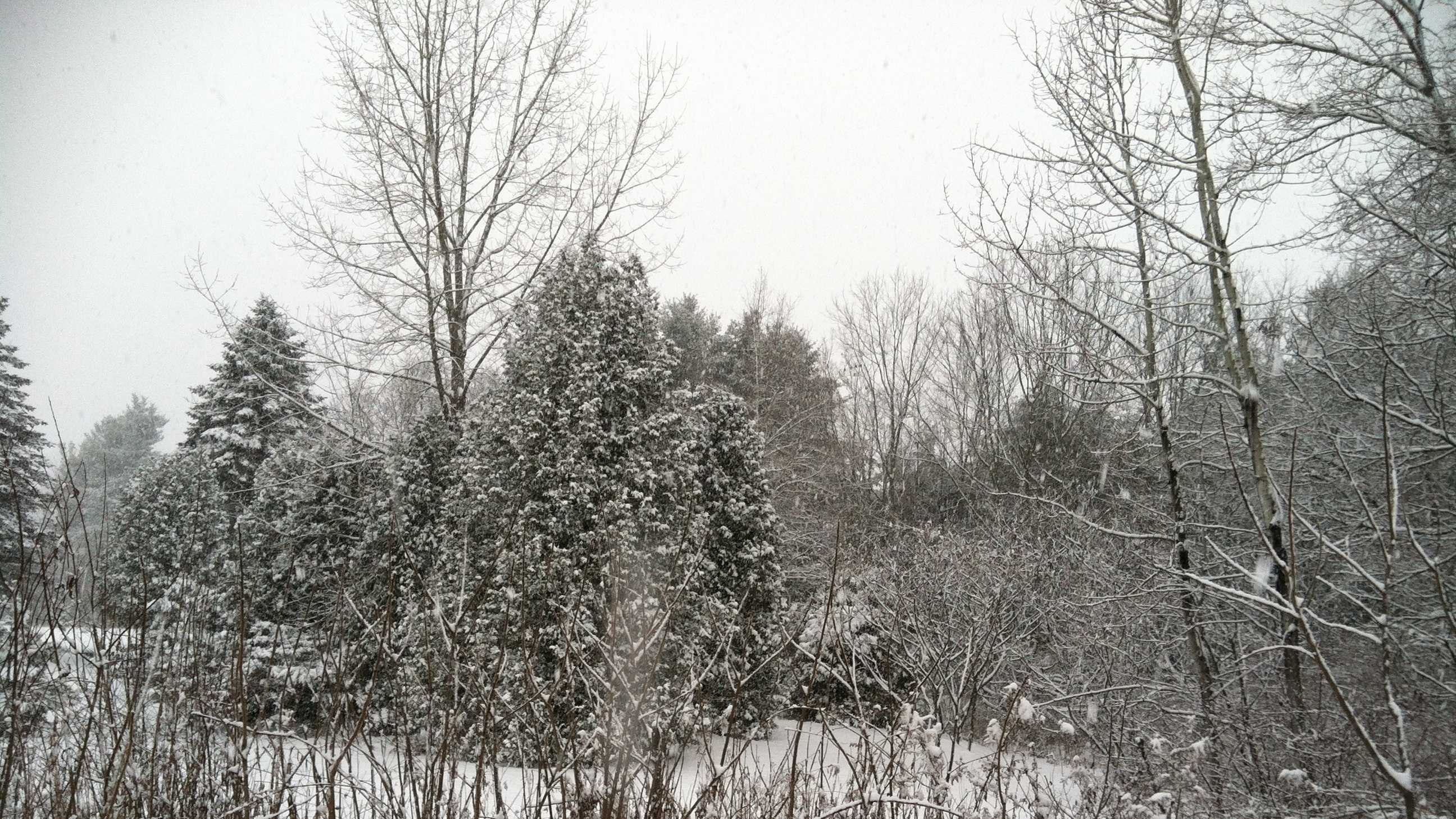Heavy Snow White River Junction