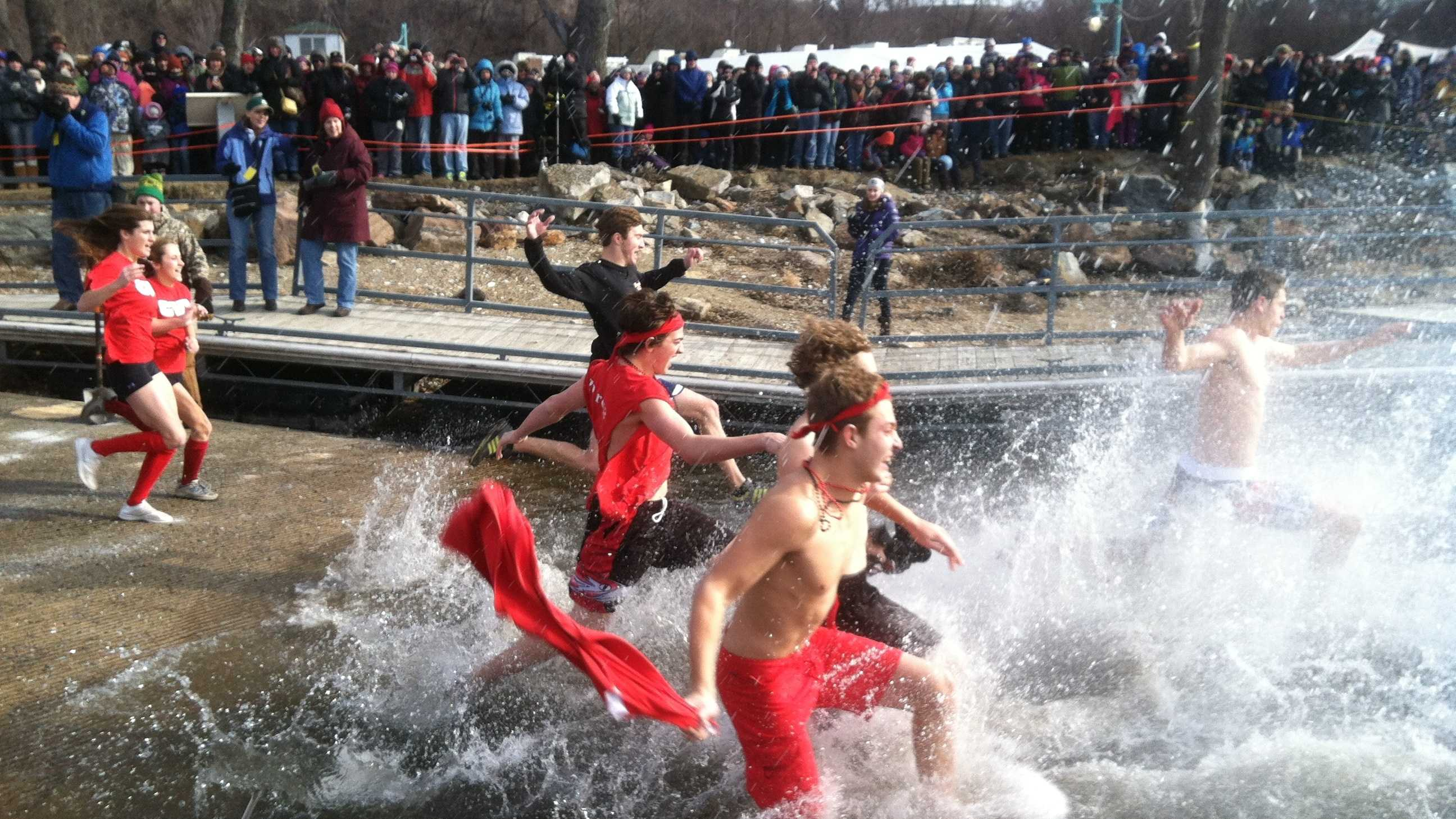 Swimmers dive into chilly Lake Champlain for the 2013 Penguin Plunge