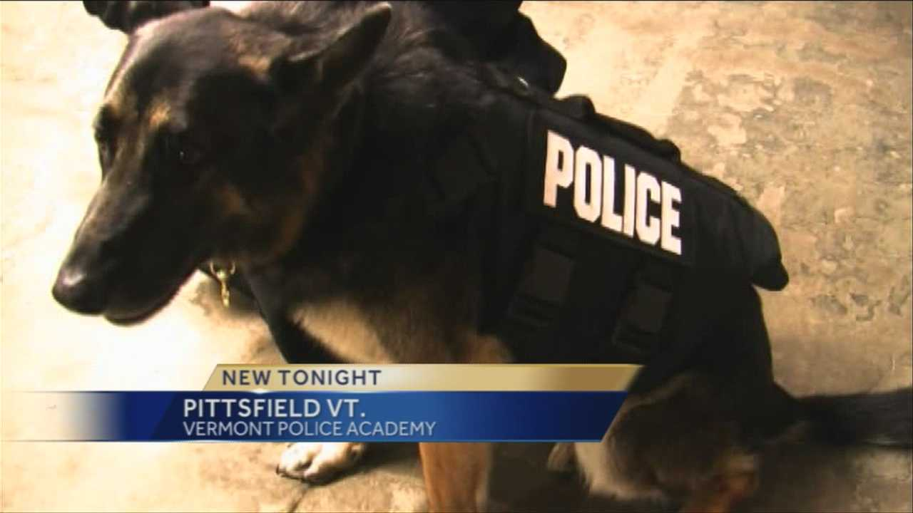 New protective vests for Vermont K9 teams