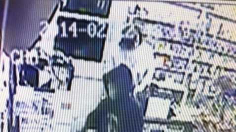 2-23-14 Police: Woman robs store with gun - img