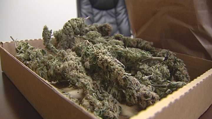 Marijuana - img
