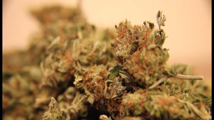 Lawmakers Reach agreement on medical marijuana 6-19-14 - img