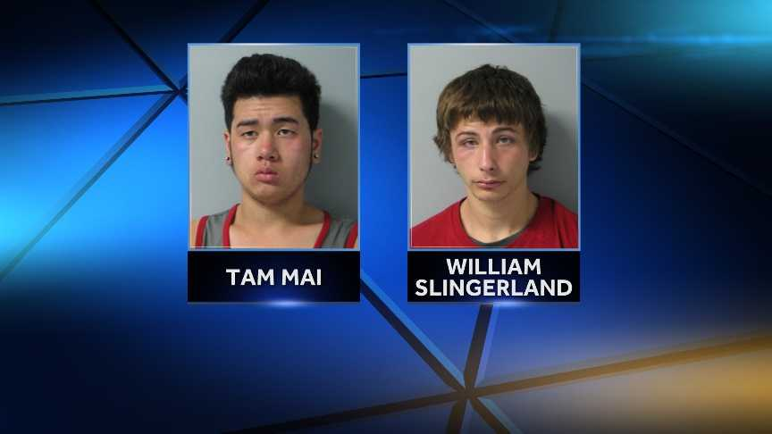 William Slingerland, 20, and Tam Mai, 18, both of Burlington, Vt. were arrested in South Burlington on larceny charges.