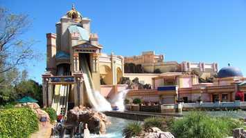 Sea World Orlando, FLAt the Gate ADULT $81.99&#x3B; CHILD $73.99 (+ tax)Online: ADULT $71.99&#x3B; CHILD $63.99  (+ tax)