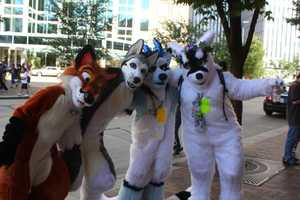 Thousands of people from across the U.S. come to Pittsburgh for Anthrocon, the world's largest furry convention. It has been held Downtown since 2006.